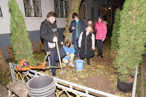 Прошла акция «Посади дерево жизни»