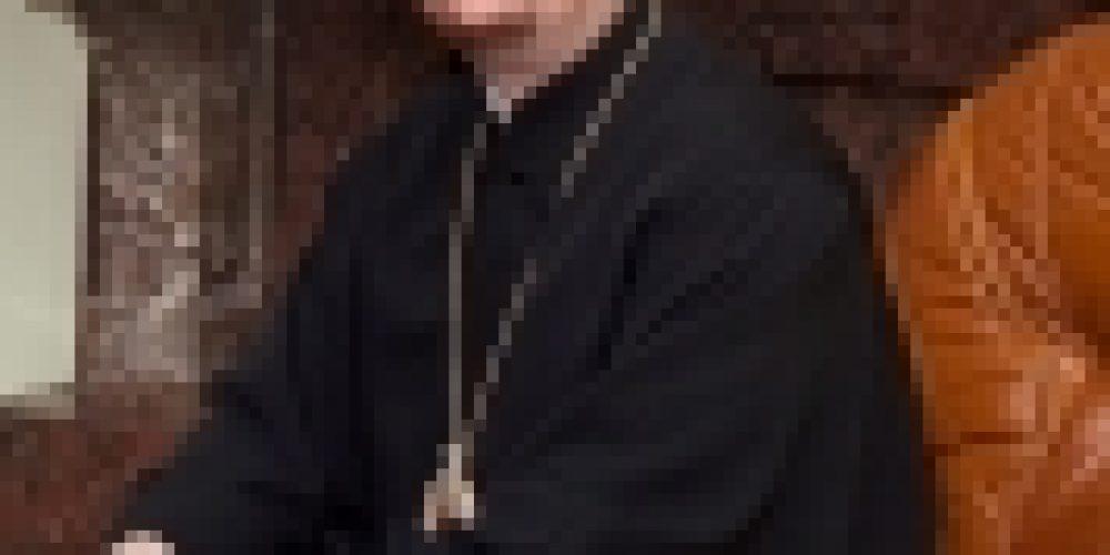Епископ Бронницкий Игнатий дал интервью газете «На Западе Москвы»